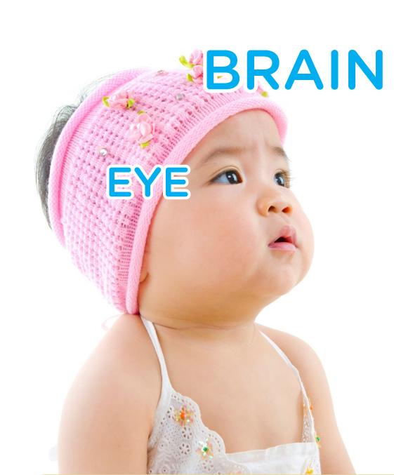 DHA for brain & eye development