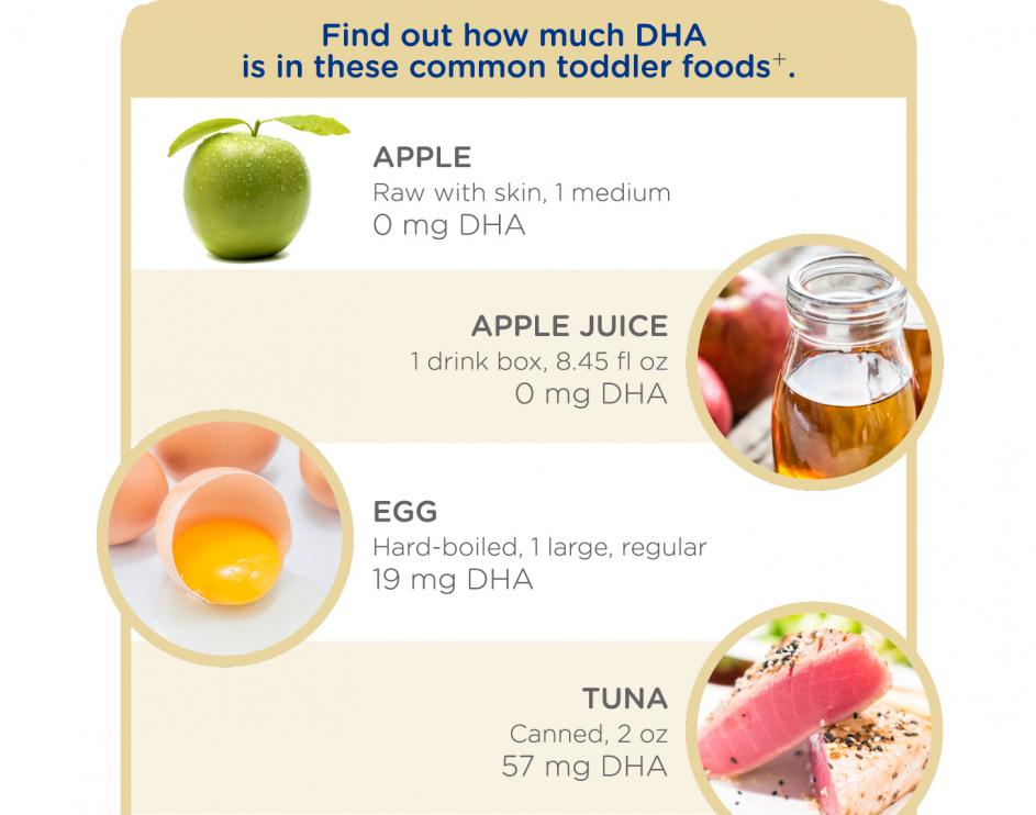 DHA source of foods